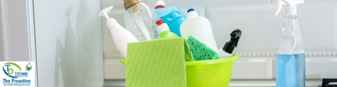 Clean your House Regularly