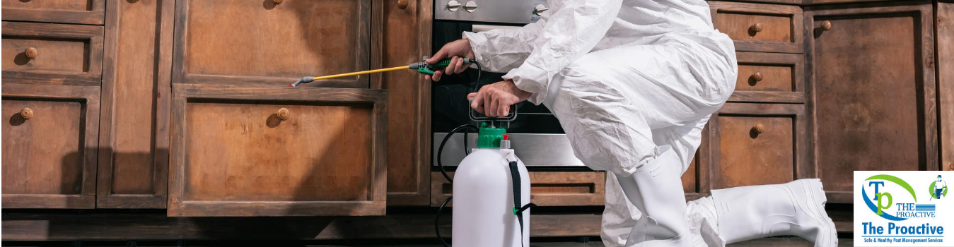 How to go about Pest Control